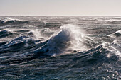 High waves in extremely rough seas in the Southern Ocean, Ross Sea, Antarctica