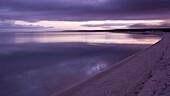 Beach at dawn in violet light, Shark Bay Road, near Denham-Hamelin Road, Western Australia, Australia