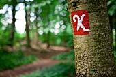 Sign of the Kellerwaldsteig hiking trail on a tree in Kellerwald-Edersee National Park, Kellerwald, Hesse, Germany, Europe