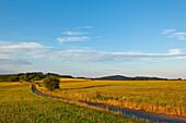 A path between fields in Kellerwald-Edersee National Park at sunset, Frankenau, Hesse, Germany, Europe