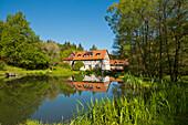 View across a swimming pond in Kellerwald-Edersee National Park in Springtime, Frankenau, Hesse, Germany, Europe