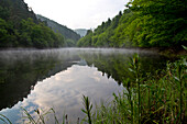 Mirrored view of Banfe Bucht at Lake Edersee at dawn with mist and green grass in Kellerwald-Edersee National Park, Lake Edersee, Hesse, Germany, Europe