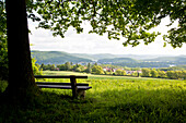Scenic view across Lake Edersee with a bench underneath a tree giving shade, Lake Edersee, Hesse, Germany, Europe