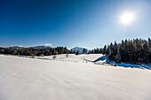 Winter scenery, Ramsau am Dachstein, Styria, Austria