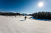 Cross-country skier in deep snow, Styria, Austria
