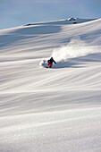 Skier downhill skiing in powder snow, Hochfugen, Fugenberg, Zillertal, Tyrol, Austria