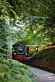Steam-powered narrow gauge railway Rasender Roland, island of Ruegen, Mecklenburg-Western Pomerania, Germany