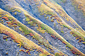 Detail of the unusual colors painting the slopes of the Arvan valley, Arvan valley, Alps, France.