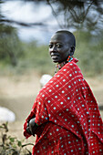 Masai people living in a small village, about 5 houses, at the foot of Mount Kilimanjaro in Kenya, 10 km from Amboseli National Park. They have traditional colorful clothes and decorations. The Masais are among the richest original people in Kenya, there