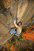 'Robert Thomas digs into the fingerlocks on ''Leave It To Jesus'' 5.11c, at Central Endless Wall at the New River Gorge, WV with vivid fall colors.'