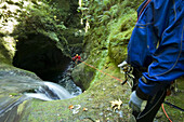 Davis Creek, South of Mount Rainier, WA. Canyoning is a new sport that consists in travelling down river canyons by walking, gliding, climbing, rappelling abseiling, swimming or jumping. Rob Cobb blue, looks at Joe Budgen rappelling abseiling, down past a