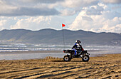 PISMO BEACH, CA - APRIL 14, 2007: A quad on a beach is normally a rare site, but not here. The Oceano Dunes State Vehicle Recreation Area is the site of ATV riders and off-roading recreation activies. Lately, this area has come under scrutiny by environme