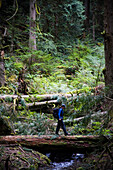 NORTH BEND, WASHINGTON. Crossing a fallen log, Allison Young stands out against a wet, green landscape.