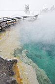 Steam rising on a thermal pool on February 13, 2008 in Yellowstone National Park, Wyoming.
