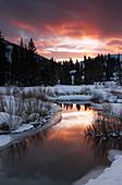 Dramatic winter sunset casts pink glow over Big Cottonwood Creek near Salt Lake City, UT