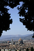 High angle view of the city between tall trees in Florence, Italy