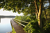 Landing stage at a lake in dusk, Schorfheide-Chorin Biosphere Reserve, Neudorf, Friedenfelde, Uckermark, Brandenburg, Germany