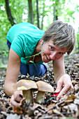 Woman collecting mushrooms, Schorfheide-Chorin Biosphere Reserve, Neudorf, Friedenfelde, Uckermark, Brandenburg, Germany