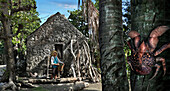 Ivatan woman near an old stone house, coconut crab in a palm tree, Sabtang Island, Batanes, Philippines, Asia