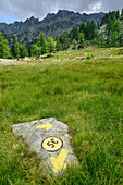 Marker on rock, Natural Park Mont Avic, Graian Alps range, valley of Aosta, Aosta, Italy
