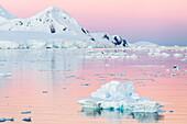 Sunset over icebergs in the Gerlache Strait, Antarctica, Southern Ocean, Polar Regions