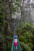 Tourists on the canopy walkway in Danum Valley, Sabah, Malaysian Borneo, Malaysia, Southeast Asia, Asia