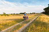 Cyclist with child trailer cycling along a coastal path, Marielyst, Falster, Denmark