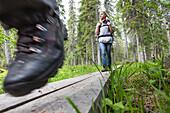 Female hiker on the Karhunkierros hiking trail, Oulanka National Park, Northern Ostrobothnia, Finland