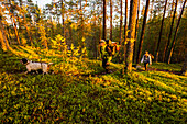 Two women hiking in the midnight sun, Oulanka National Park, Northern Ostrobothnia, Finland