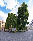 Alte Hofpfisterei, Munich, Upper Bavaria, Bavaria, Germany