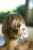 Woman with orchid in hair, rear view