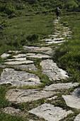 A hiker on a stone footpath, Binn Valley, Valais Canton, Switzerland