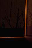 Light surrounding ajar door
