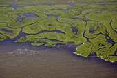 Several rivers flowing into a body of water, aerial view