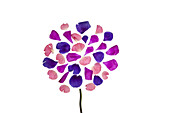Vibrant hued flower petals arranged with a stem to represent a flower