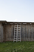 Two ladders leaning against a rustic wooden structure
