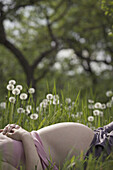 A pregnant woman lying in the grass, midsection