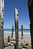 Wooden poles at beach against clear sky