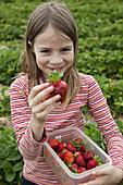Portrait of girl holding strawberry box, smiling