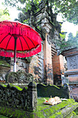 Offering table, Puri Saren Agung palace, Ubud, Gianyar, Bali, Indonesia