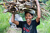 Smiling woman carrying a bunch of wood on her head, near Sidemen, Bali, Indonesia