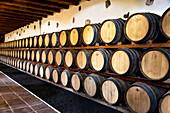 Bodegas Rubicon, Weinanbaugebiet La Geria, Lanzarote, Kanarische Inseln, Spanien