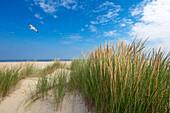 Dunes on Nordstrand, Norderney, Ostfriesland, Lower Saxony, Germany