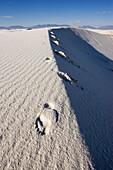 Düne und Fußspur, Licht und Schatten, White Sands National Monument, New Mexico, USA