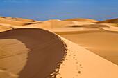 Footprints in the libyan desert, Libya, Africa