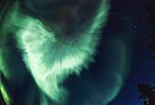 Northern Lights Corona, Aurora borealis, Finnish Lappland, Europe