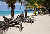 Driftwood and palm trees on the tropical beach Saud Beach in Pagudpud, Ilocos Norte province on the main island Luzon, Philippines, Asia