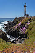 Pescadero, Pacific Coast Highway, Highway 1, West Coast, Pacific, California, USA