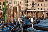 row of gondolas berthed near San Marco, poles, paline, along the Riva degli Schiavoni, Venice, Italy