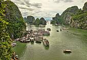 traditional junks sailing in Halong Bay, Vietnam.